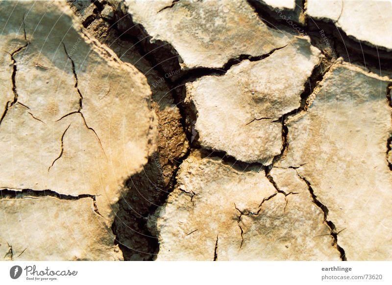 Graffiti Brown Earth Broken Desert Longing Dry Wrinkles Crack & Rip & Tear Drought Delicate Sewer Vaulting Landscape format