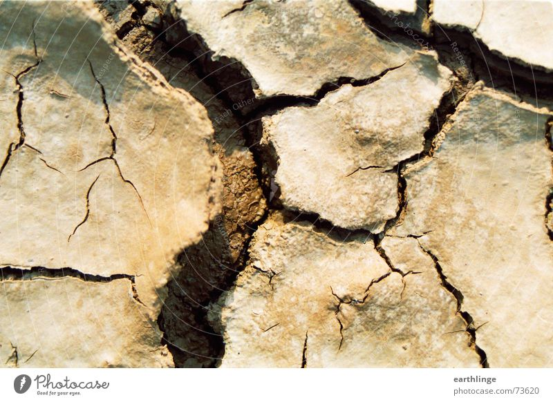 Mini Grand Canyon Dry Landscape format Broken Drought Vaulting Brown Longing Delicate Macro (Extreme close-up) Earth Crack & Rip & Tear Sewer Desert Close-up
