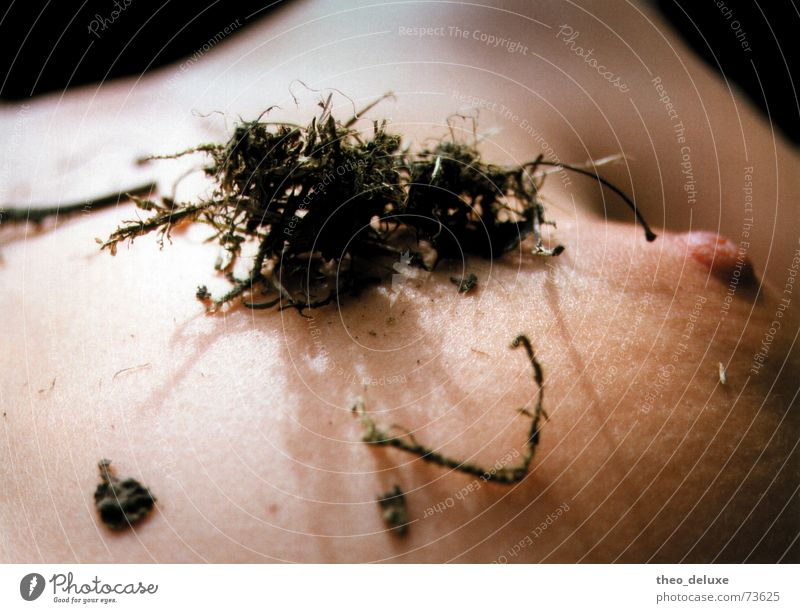 Woman Nature Plant Skin Chest Nude photography