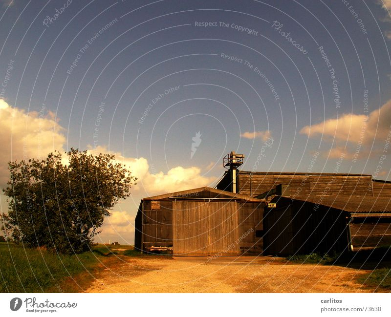 Nature Autumn Warmth Physics Barn Clouds in the sky Resettlement farm
