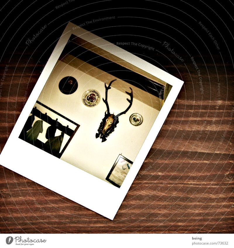 Polaroid Gastronomy Club Beer Restaurant Jacket Hat Historic Antlers Safari Brunch Roe deer Oak tree Spruce Roadhouse Rustic