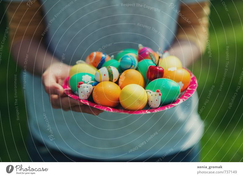 colorful Easter eggs Food Nutrition Breakfast Organic produce Plate Lifestyle Healthy Healthy Eating Harmonious Contentment Leisure and hobbies Playing
