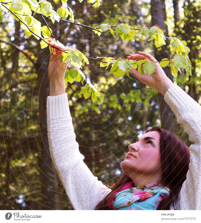Human being Woman Nature Youth (Young adults) Plant Tree Relaxation Young woman Landscape Calm Leaf 18 - 30 years Forest Adults Environment Warmth