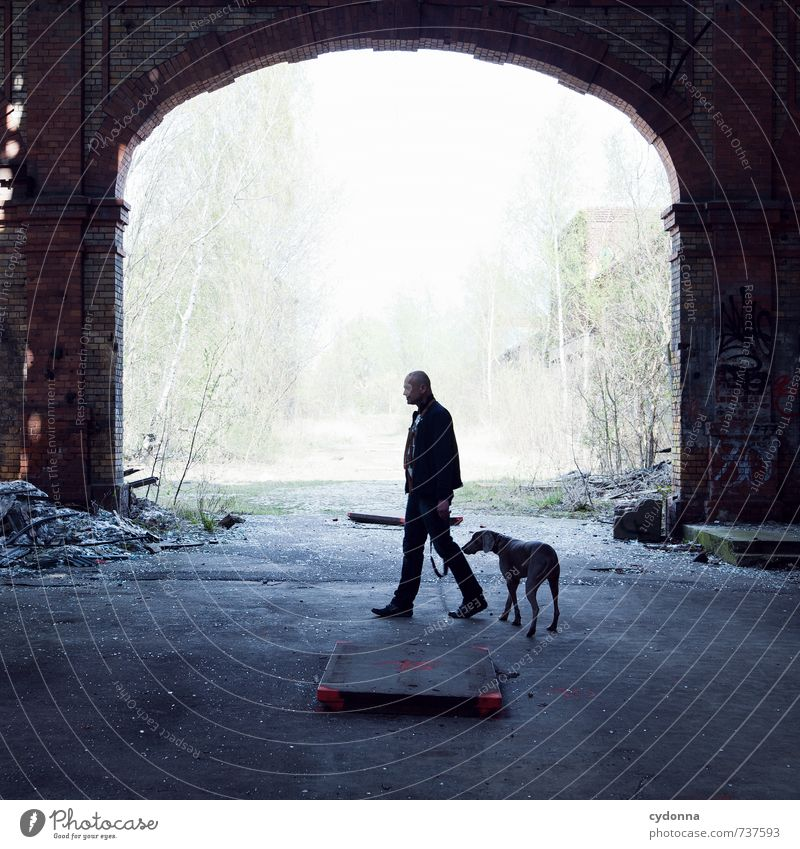 Dog Human being Nature Man City Loneliness Calm Environment Adults Life Sadness Senior citizen Movement Lanes & trails Friendship 45 - 60 years