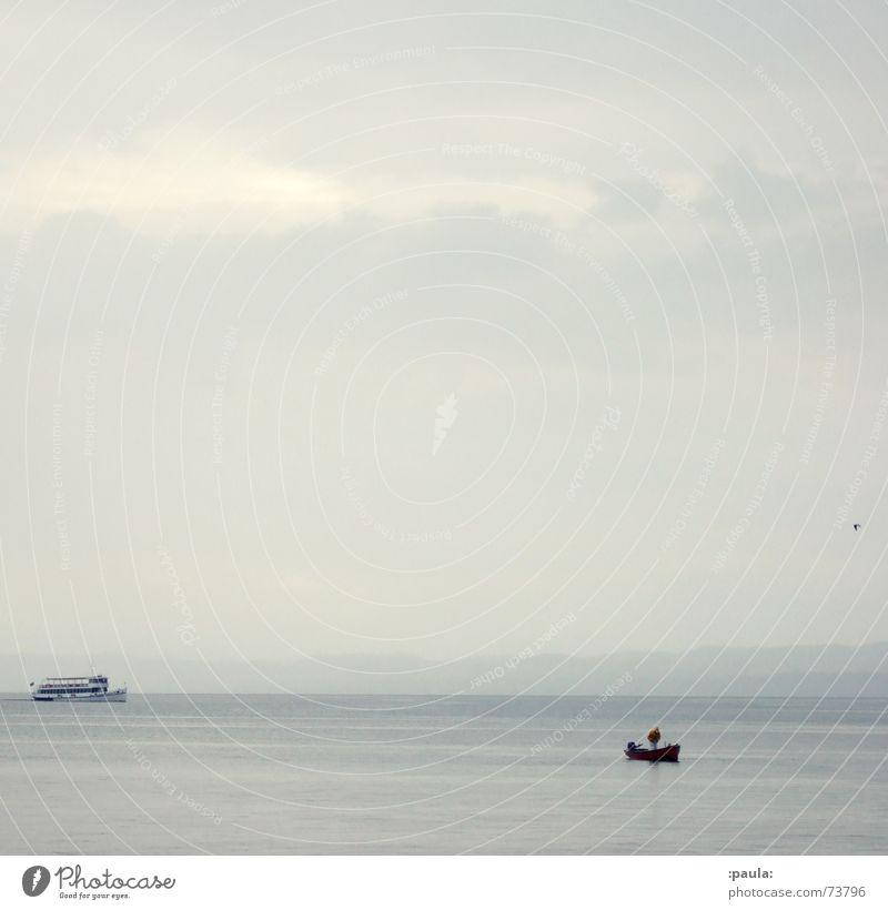 Lake Garda Idyll Italy Fishing boat Seagull Bird Gray Morning Ferry Horizon Calm Water Dawn Sky Coast