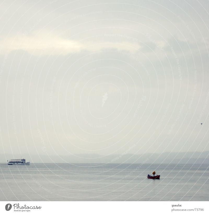 Water Sky Calm Gray Bird Coast Horizon Italy Idyll Seagull Ferry Fishing boat Lake Garda