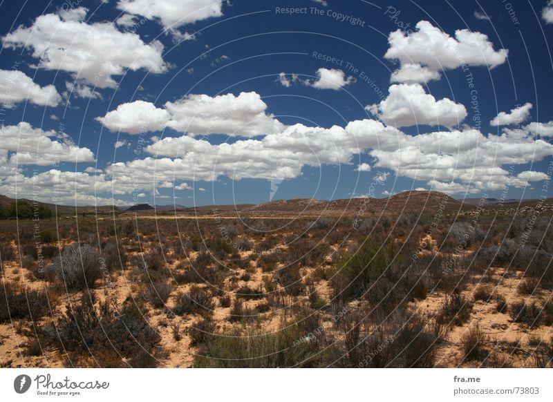 cloudily Landscape Sky Clouds Horizon Dry Africa Steppe aquilia park gamereservation stodgy bush Colour photo