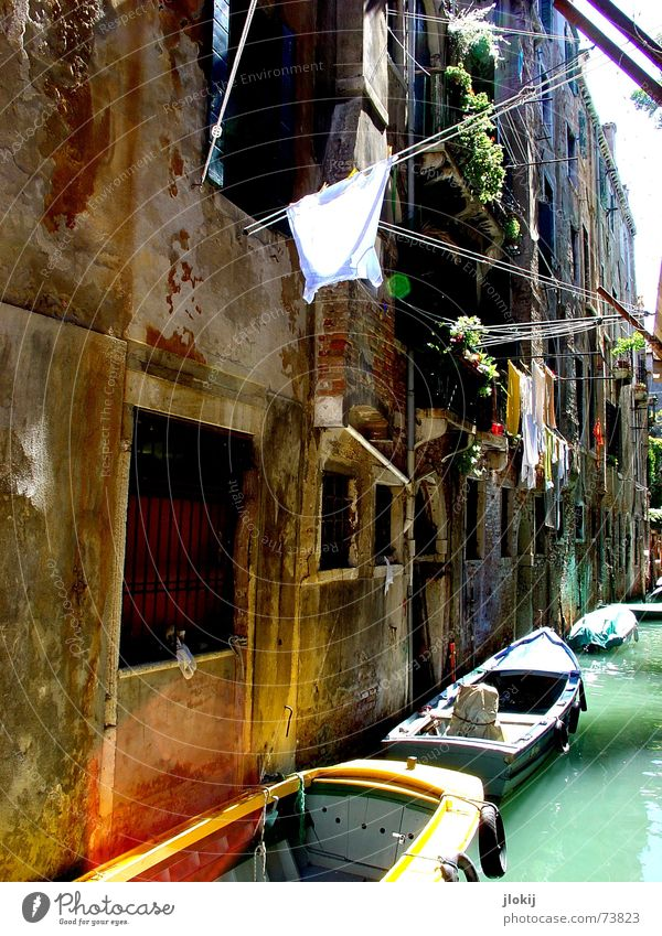 canal Venice Italy Europe Watercraft Sunlight Green Wall (barrier) House (Residential Structure) Waterway Shirt To go for a walk Dream Vacation & Travel Town
