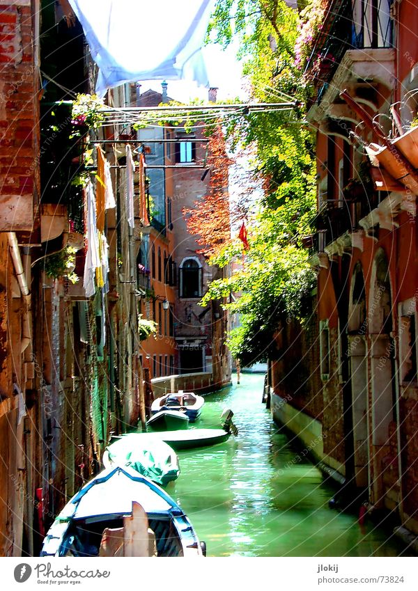 channel_2 Venice Italy Europe Watercraft Sunlight Green Wall (barrier) House (Residential Structure) Waterway Shirt To go for a walk Dream Vacation & Travel