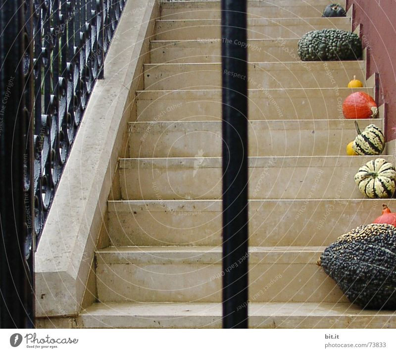 Sadness Autumn Healthy Art Moody Above 2 Stairs Arrangement Decoration Idyll Nutrition Tall Broken Seasons Handrail