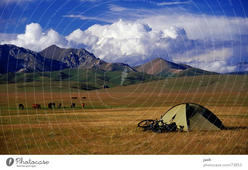 Campsite at Song Kol (3000m, Kyrgyzstan) Tent Green Bicycle Brown Meadow Yellow Clouds Cumulus High plain Calm Exterior shot Mountain domed tent Sky Freedom