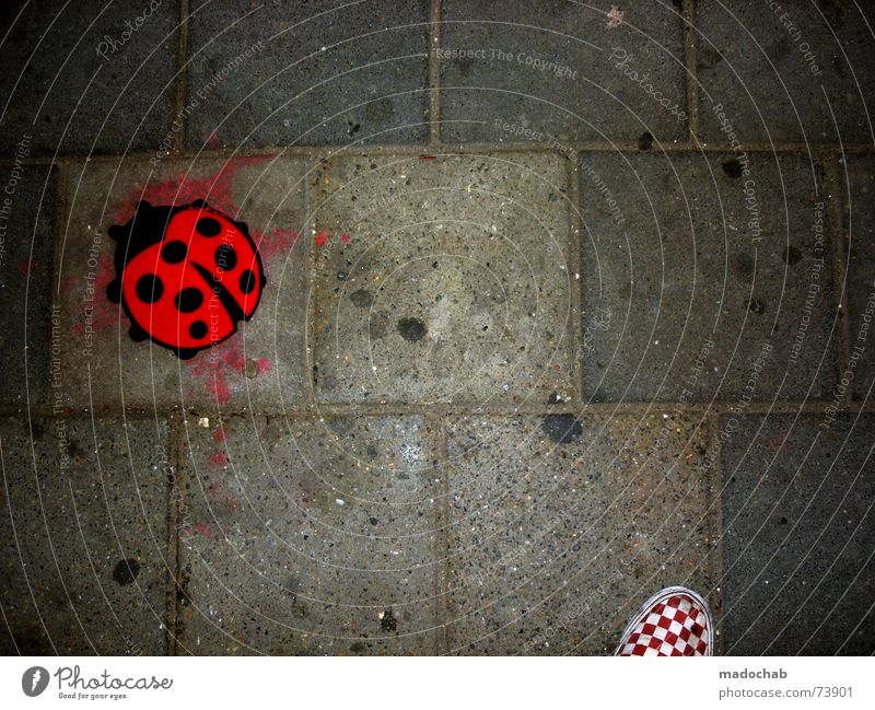 THIS IS 300 | ladybug urban city ground shoe shoe shoe Asphalt Ladybird Square Footwear Checkered Pattern Red Black White Gray Town Pedestrian Delivery truck