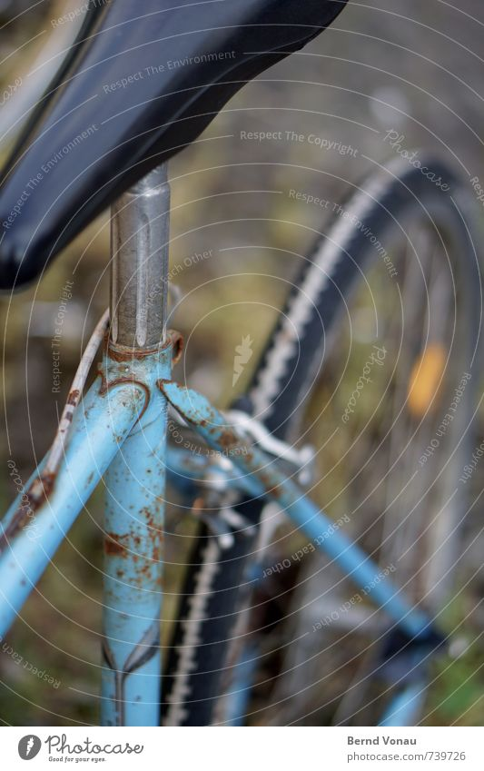 whack Bicycle Transport Rust Old Retro Blue Green Black White Brakes Racing cycle Aluminium Tire Bicycle frame Mechanics Colour photo Exterior shot Deserted Day