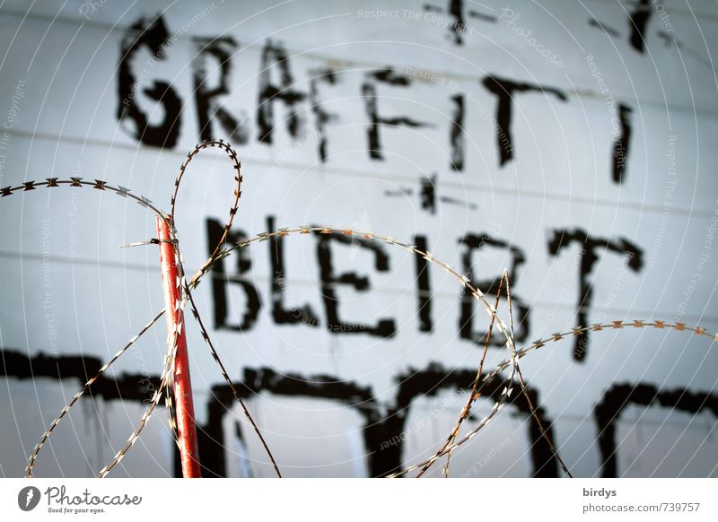 In any case Art Youth culture Subculture Graffiti Wall (barrier) Wall (building) Facade Barbed wire fence Authentic Exceptional Threat Rebellious Enthusiasm