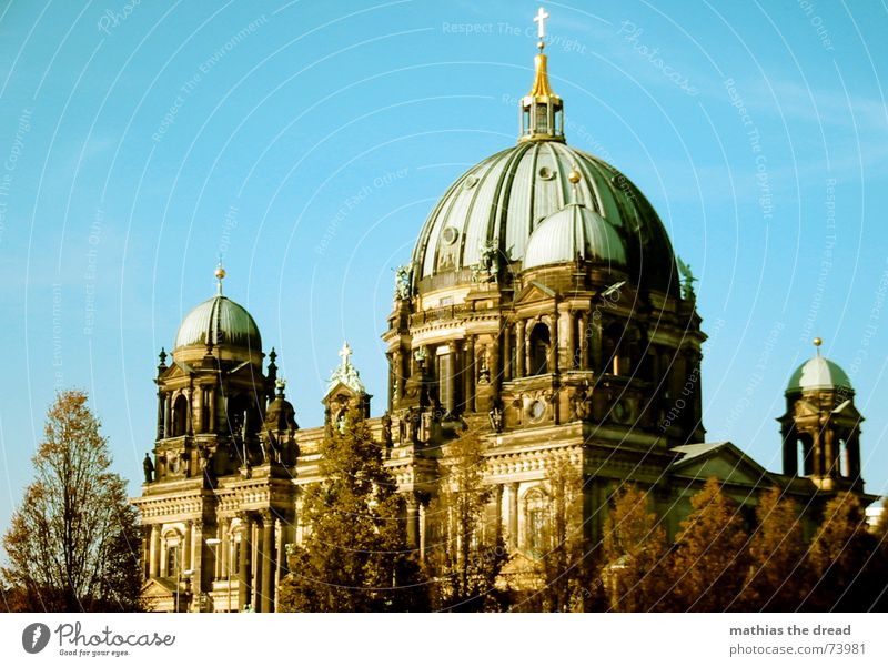 Berlin Cathedral Religion and faith House of worship Downtown Berlin Tree Domed roof good weather green roof Sky Back Architecture
