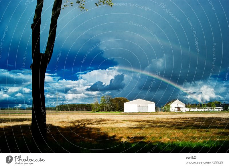 rainbow Environment Nature Landscape Sky Clouds Horizon Climate Weather Beautiful weather Plant Tree House (Residential Structure) Bright Calm Idyll Transience