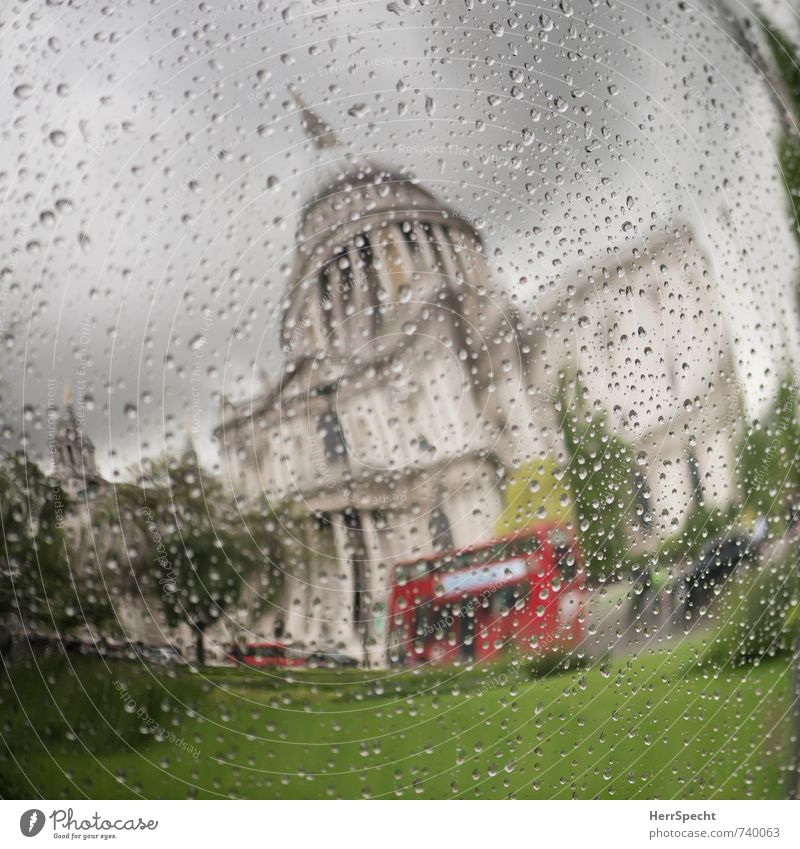 Spring in London Sky Clouds Storm clouds Bad weather Rain Plant Tree Grass Park England Capital city Downtown Old town Tourist Attraction Landmark