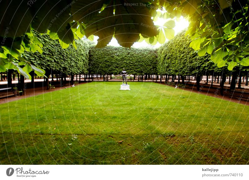 Naked in the park Human being 1 Art Work of art Sculpture Tree Garden Park Meadow Green Paris Horticulture Rectangle Calm France Leaf Colour photo Exterior shot