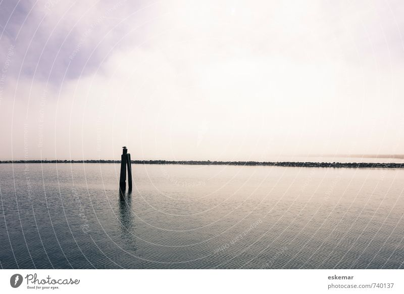 Sky Nature Blue Water Ocean Loneliness Landscape Calm Far-off places Emotions Coast Gray Moody Horizon Contentment Free