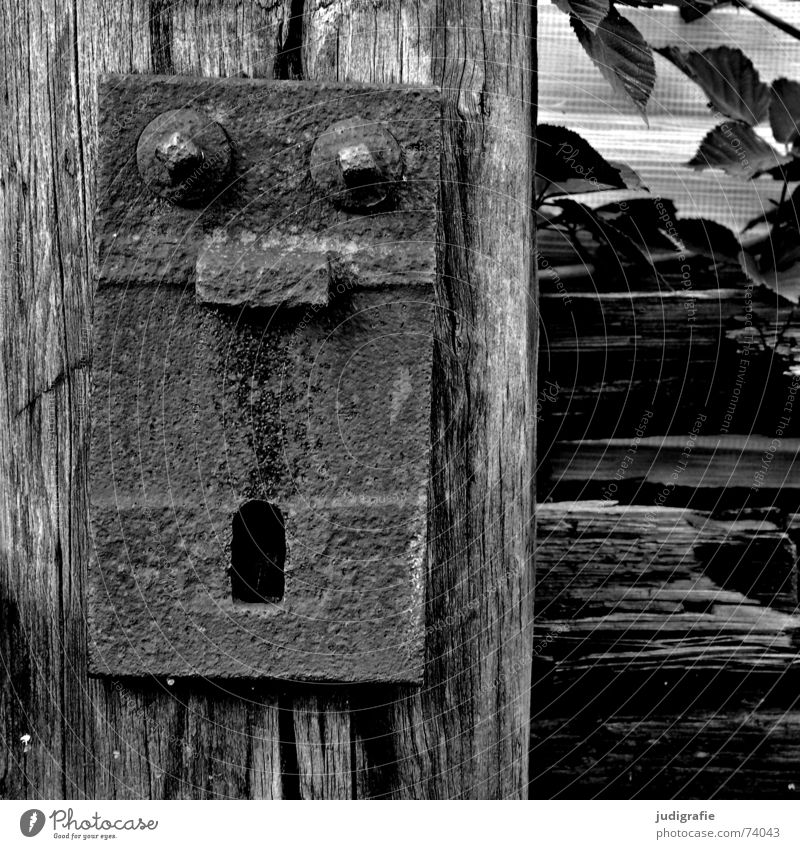 Oh! Oh! Oh! Amazed Scare Frightening Wood Fastening Railroad tracks Plant Black White oh Face Facial expression Marvel Screw square Eyes Nose Mouth threshold