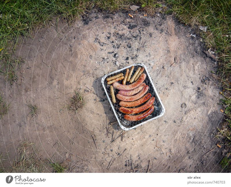 Romantic picnic in the countryside Food Meat Sausage Nutrition Eating Nature Earth Spring Summer Lawn Fireplace Meadow Barbecue (apparatus) Delicious