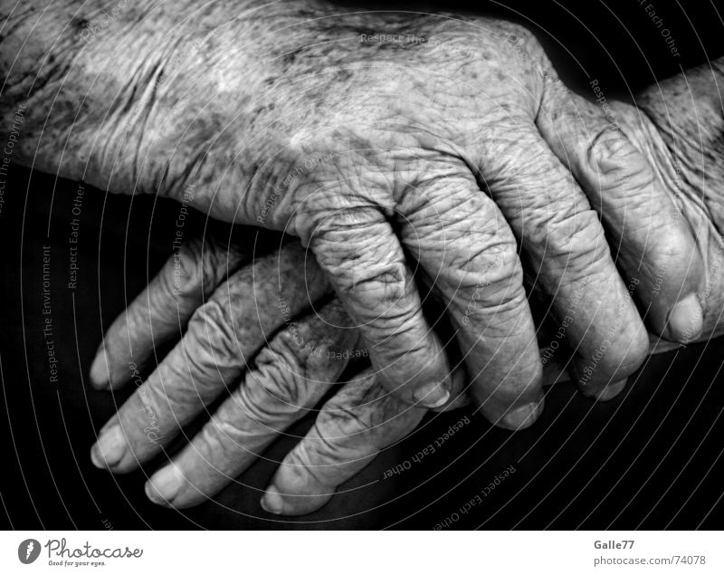 Traces of life Hand Time Fingers To hold on Safety (feeling of) Hold Sensitive Vulnerable Old Wrinkles Life Emotions Warmth