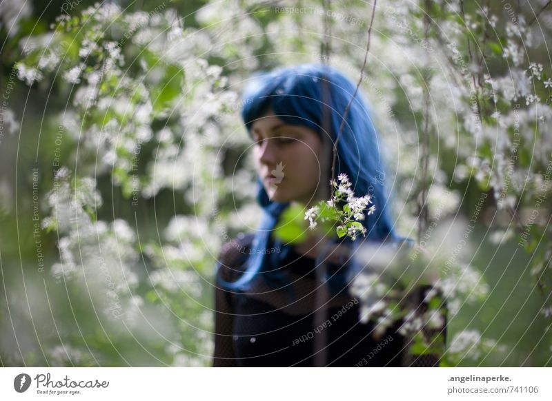 See Teresa XI. Tree Blossom Wig Shallow depth of field Blur Dreamily Girl
