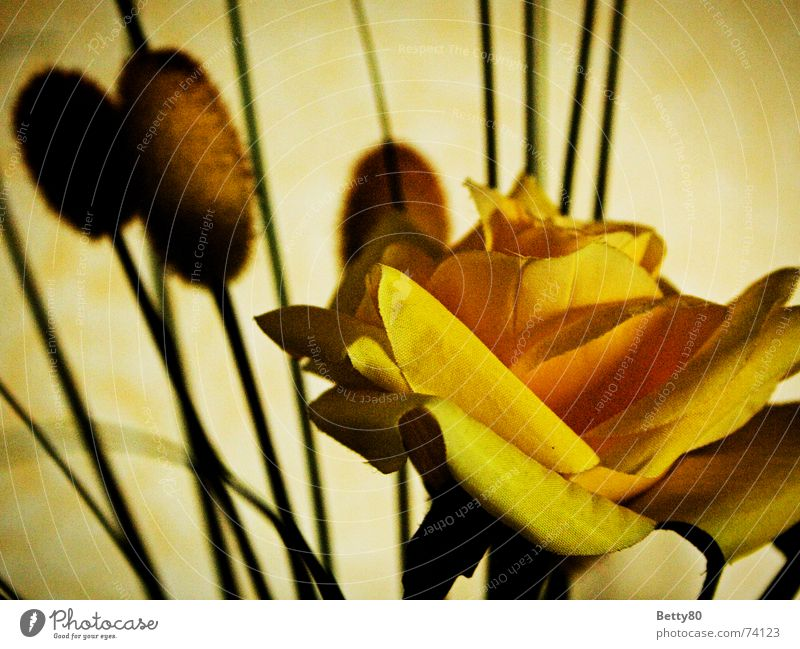 Flower Yellow Rose False Placed Artificial flowers Silk flower