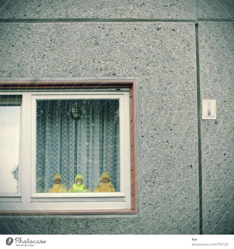 Prefabricated windows with decorative dolls Colour photo Subdued colour Exterior shot Deserted Copy Space top Day Central perspective Living or residing