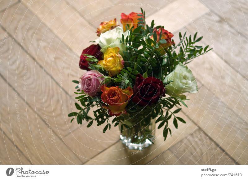 Happy Birthday II Feasts & Celebrations Valentine's Day Mother's Day Wedding Plant Rose Blossom Foliage plant Fragrance Elegant Fresh Kitsch Natural Emotions