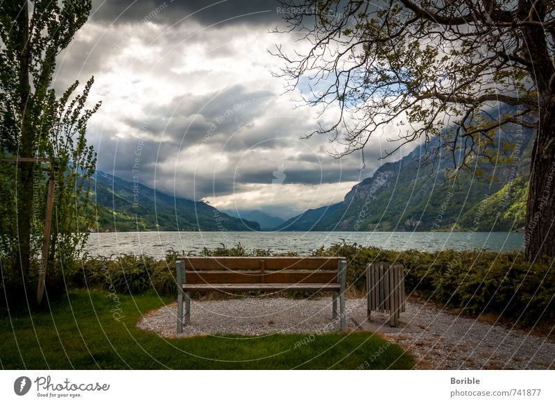 Place with view Well-being Calm Vacation & Travel Tourism Trip Freedom Environment Nature Landscape Water Clouds Lake Walensee Relaxation Crouch Looking Dream