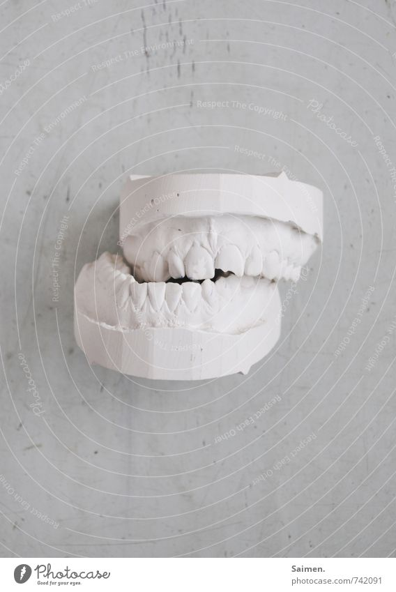 White Healthy Bright Mouth Broken Teeth Set of teeth Dental care Frustration Dentist Gypsum Imprint Toothache Grind