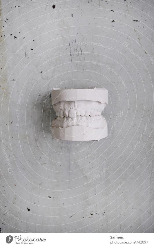 plaster dentures Teeth White Imprint Gypsum Tabletop Set of teeth Bite Black & white photo Interior shot Copy Space left Copy Space right Copy Space top
