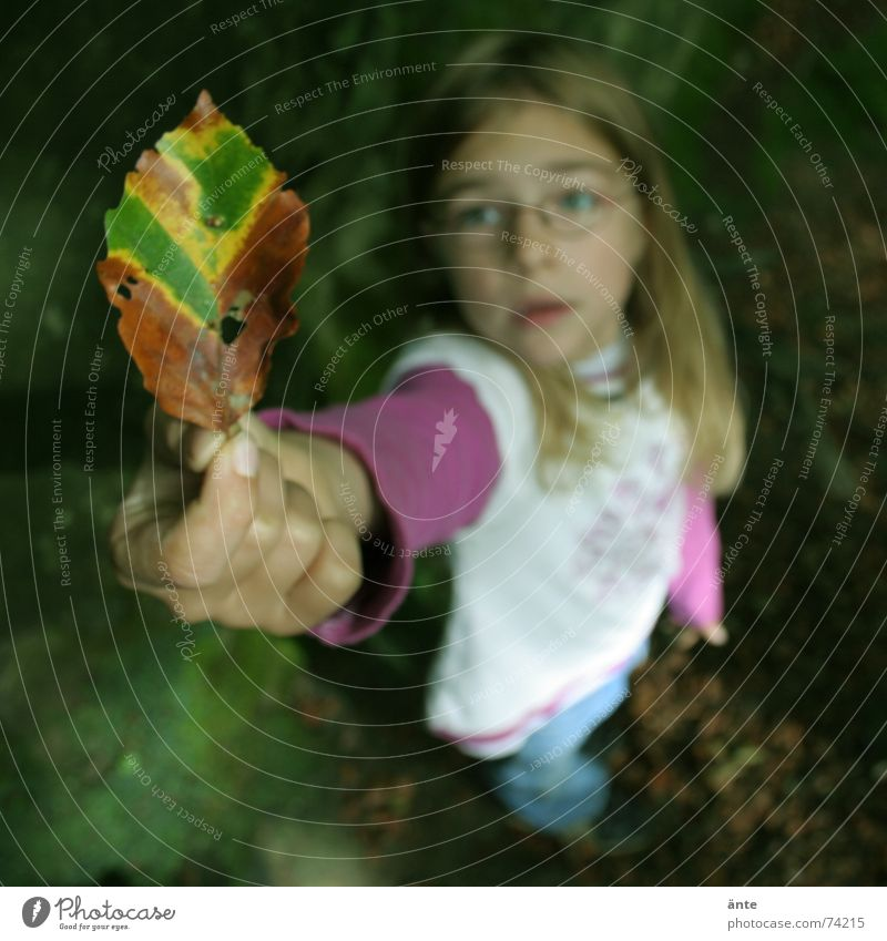 Look, it's gonna be autumn! Leaf Autumn Child Grief Hand Eyeglasses Shows Fingers Noble Blonde Small Discover Playing Nature Indicate Sadness Marvel