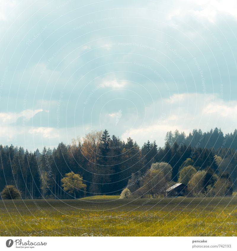 Sky Nature Vacation & Travel Tree Loneliness Landscape Clouds House (Residential Structure) Forest Meadow Spring Field Idyll Authentic Individual Esthetic