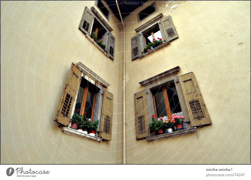 Flower House (Residential Structure) Wall (building) Window Brown Italy Pipe Beige Shutter Lake Garda