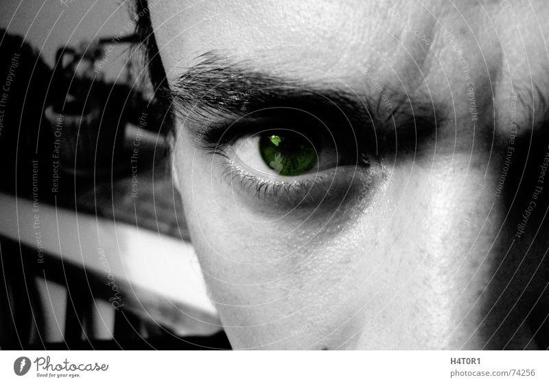 Eyes Freedom Near Anger Wild animal Deep Evil Captured Truth