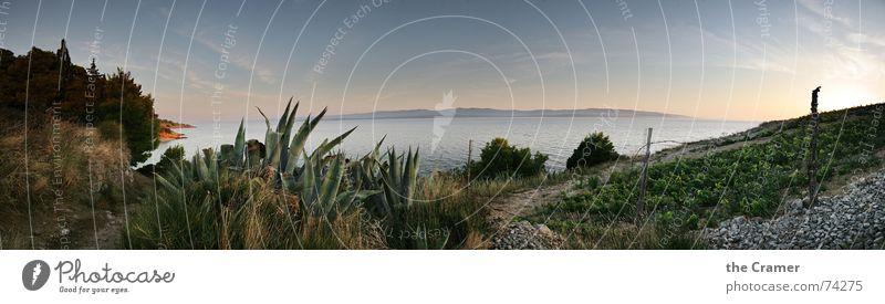 Panorama_Brac Panorama (View) Ocean Croatia Sunset Agave Horizon Coast Moody Beautiful Water Europe brac Vine Mediterranean sea Sky Island Evening Calm Large