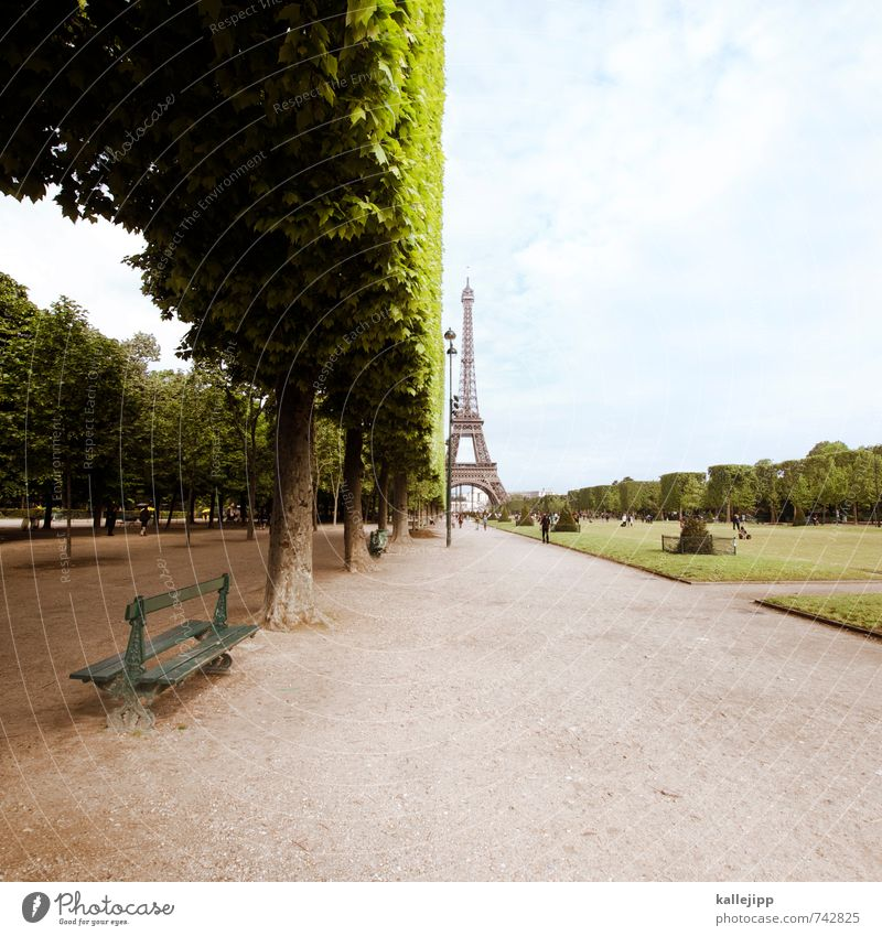 Vacation & Travel City Tree Far-off places Love Park Leisure and hobbies Lifestyle Tourism Trip Paris Capital city Tourist Attraction Sightseeing Gardening Half