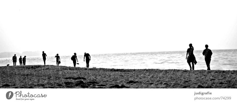 On the beach Lake Beach Ocean To go for a walk Going Hiking Light Back-light Coast Black a dog Baltic Sea Human being Multiple Couple Walking Water Silhouette