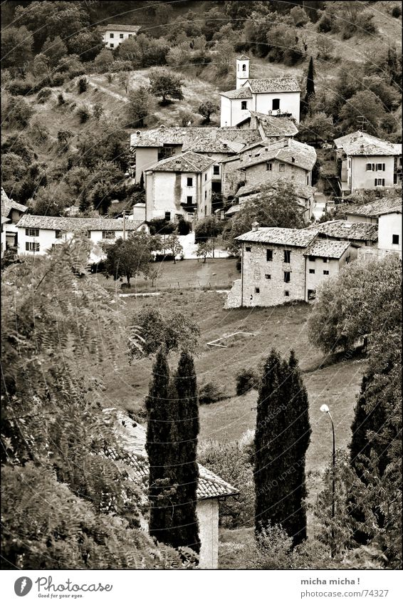 Bella Italia Lake Garda Italy Lombardy House (Residential Structure) Village Small Cute Tree Slope Landscape tremosine Individual Mountain Black & white photo