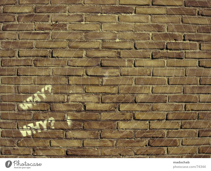 City Red Wall (building) Life Background picture Wall (barrier) Stone Graphic Brick Word Typography Ask Smart Poster Objective Spray
