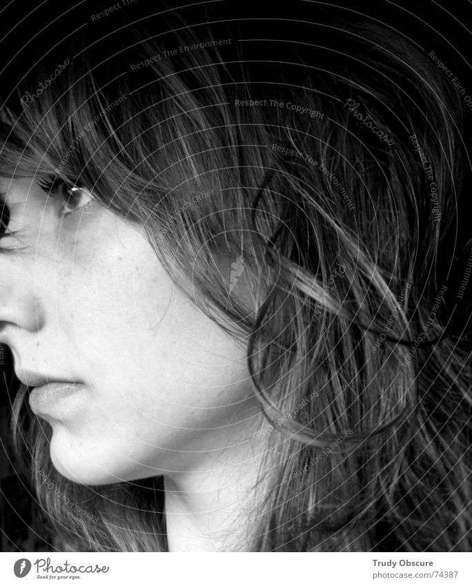 darkside lightside Woman Feminine Side Portrait photograph Human being from the side Hair and hairstyles Eyes