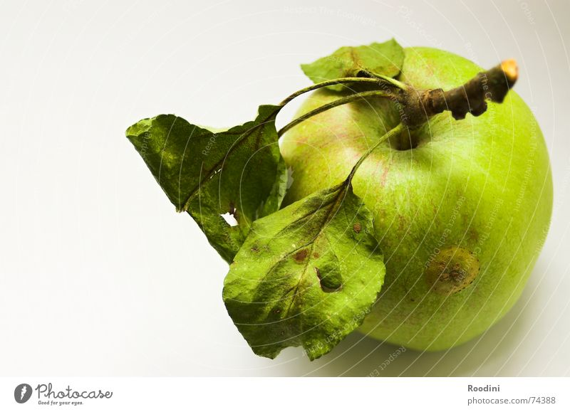 The apple itself Green Gravity Juice Healthy Toothbrush Original Authentic Delicious Fruit sugar Vitamin Tree Leaf Stalk Molt Mature Thanksgiving Sense of taste