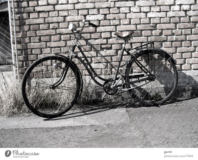 Ride my old Bike Bicycle Nostalgia Original Dust Wall (barrier) Stone wall Transport Old Rust leather saddle