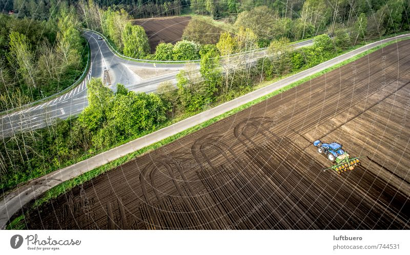 Drill corn Landscape Plant Spring Beautiful weather Tree Field Forest Tractor Work and employment Driving Green Agriculture Colour photo Exterior shot