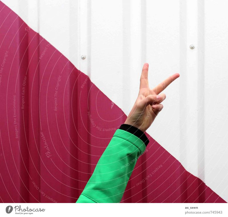 YES! Arm Hand Fingers 1 Human being Youth culture Wall (barrier) Wall (building) Facade Sign Success Gesture Communicate Cool (slang) Sharp-edged Brash