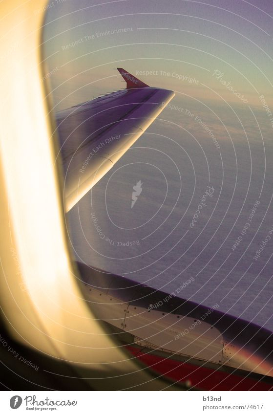 Sky White Blue Clouds Window Airplane Horizon Aviation Vantage point Wing Engines Ventilate