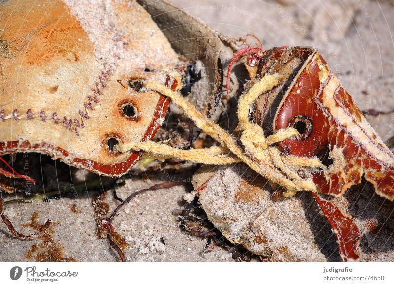 Beach Sand Footwear Brown Wet Broken Leather Doomed Find Shoelace Flotsam and jetsam Eyelet Discovery