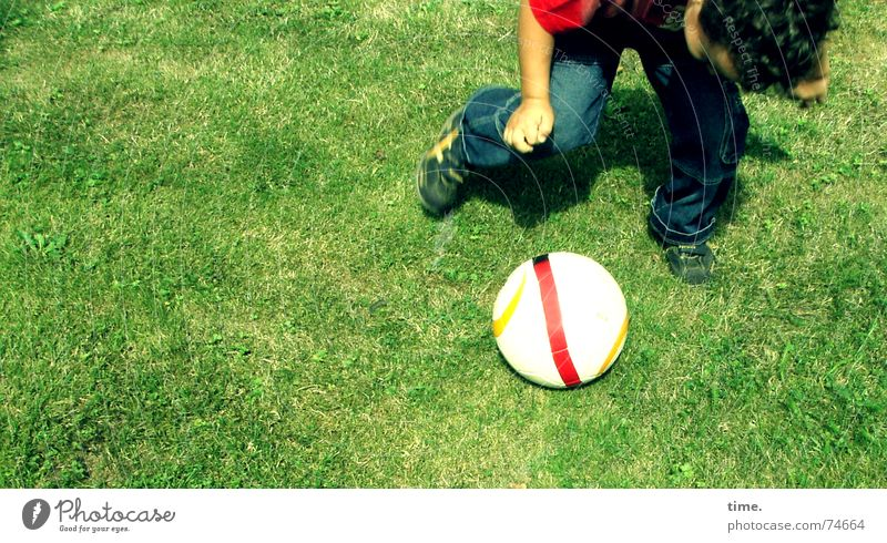 Joy Meadow Playing Boy (child) Soccer Posture Ball Lawn Concentrate Watchfulness Dynamics Lust Sports Training Rotation Deployment